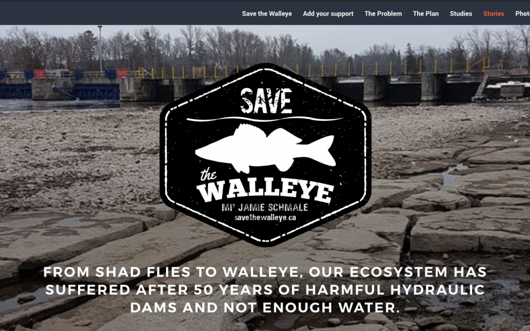 save the walleye wordpress feature image
