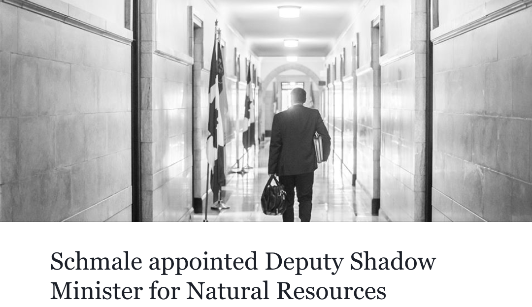 MP Schmale appointed Deputy Shadow Minister of Natural Resources!